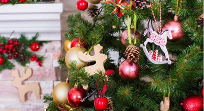 Séjours de Noël à Amboise