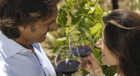 dégustation vins Bourgogne
