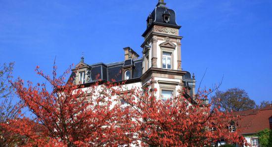 Strasbourg autumn promotion